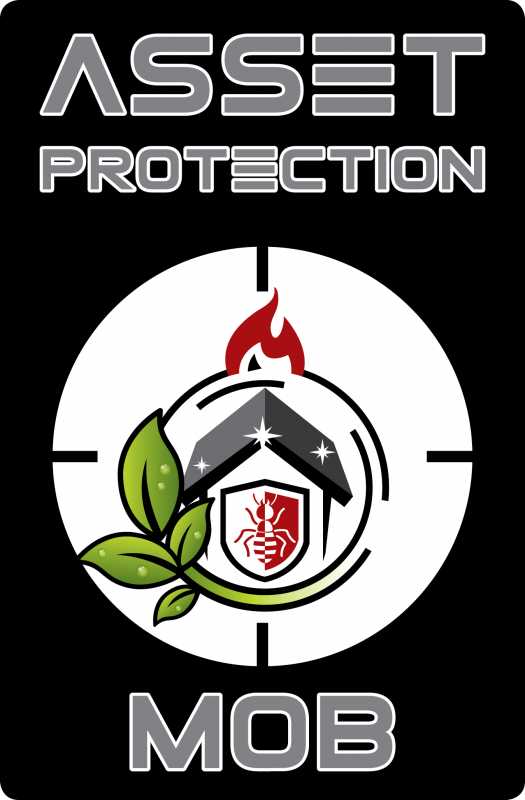 asset-protection-mob